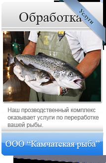 Обработка и переработка рыбы